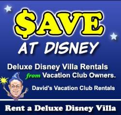 David's DVC Rentals