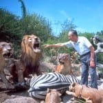 50 Years of The Jungle Cruise - African Veldt 1