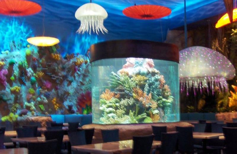 Huge fish tank bursts at t rex downtown disney wdw for Fish tank full movie