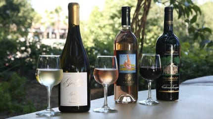New 'Disney Family of Wines,' New Menu at Alfresco Tasting Terrace at Disney California Adventure Park 9
