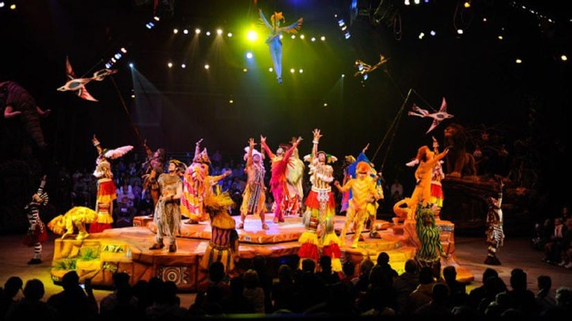 Festival of the Lion King Returned to Animal Kingdom Today! 10