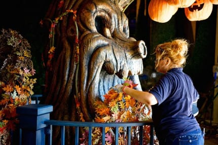 Behind the Scenes: Planting the Disney Cruise Line Halloween Pumpkin Trees 12