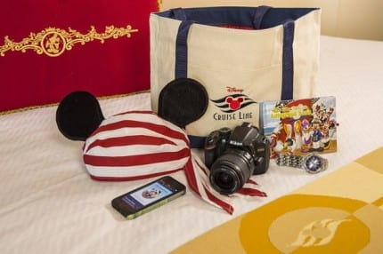 Must Have Things To Bring On A Disney Cruise 1
