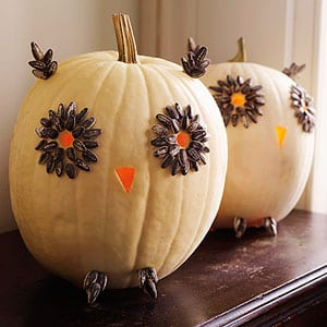 TMSM Pumpkin Art~ Owls 18