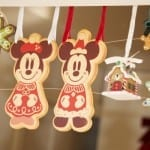 PHOTO GALLERY: Holidays at Tokyo Disney Resort 8
