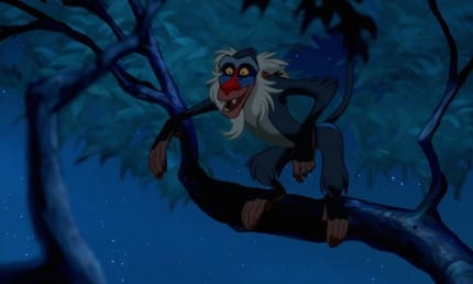 10 Wise Rafiki Quotes You Need to Read 1