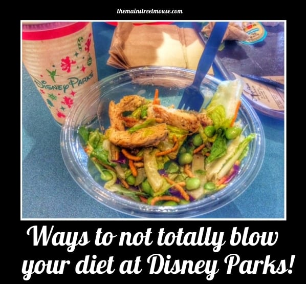 Ways To Not Totally Blow Your Diet At Disney! (New Years Resolution help!) 3