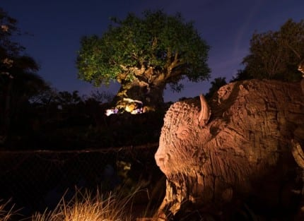 Tree of Life Grows New Roots at Disney's Animal Kingdom 1