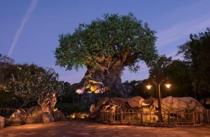 Tree of Life Grows New Roots at Disney's Animal Kingdom 5