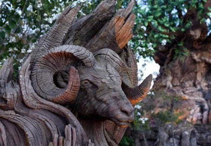 Tree of Life Grows New Roots at Disney's Animal Kingdom 2