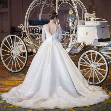 Disney's Fairy Tale Wedding Group Releases Limited Edition ...