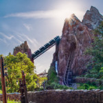 Staff Picks: Our 9 Favorites from Disney's Animal Kingdom