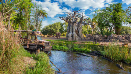 DAK-Staff-Picks-kilimanjaro-safaris