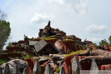 Disney from a Teen's Perspective: Splash Mountain, My Little Brothers First Time 2