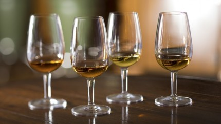 Whiskey and Cognac Tastings on a Disney Cruise 3