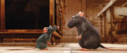 Ratatouille67