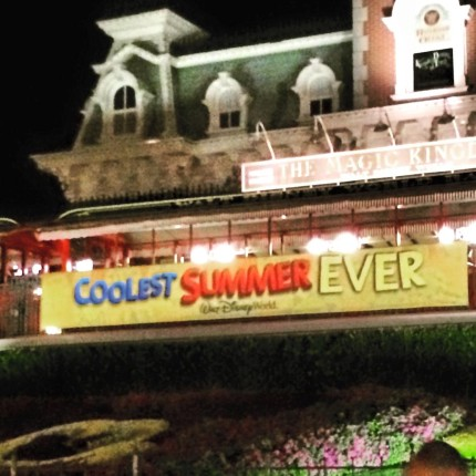 Things Overheard While at Disney ~ 24 Hour Party Edition 6