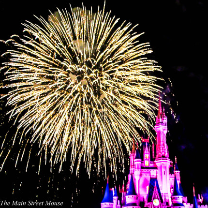 What is Disney Magic? Do You Believe? 6