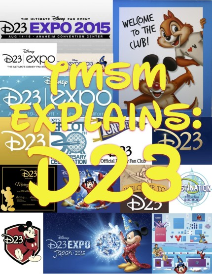 TMSM Explains: How Meet And Greets Will Work At The D23 Expo 1