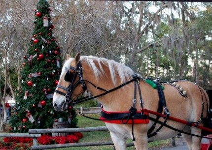 Add Some Fa La La to Your Holidays with a Sleigh Ride at Walt Disney World Resort 66