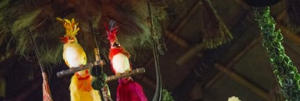 QUIZ: Test Your Knowledge of Walt Disney's Enchanted Tiki Room at Magic Kingdom Park 9