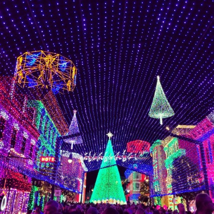 A Look at The Osborne Lights at Disney's Hollywood Studios 6