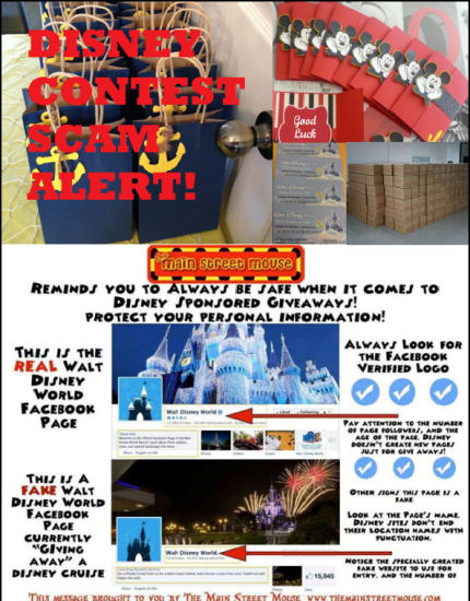 TMSM Mythbusters: You Can Win A Disney Trip 5