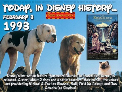 Today In Disney History ~ February 3rd 13