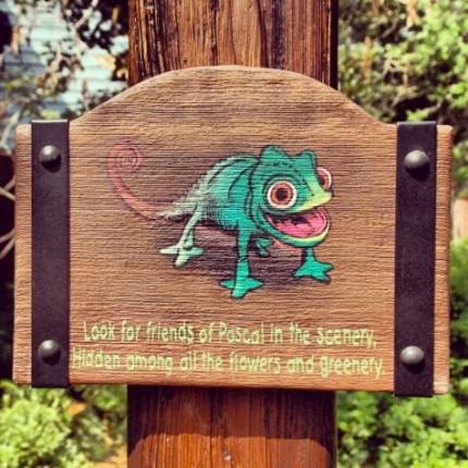 Pascal Sign