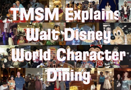 TMSM Explains: Walt Disney World Character Dining 4