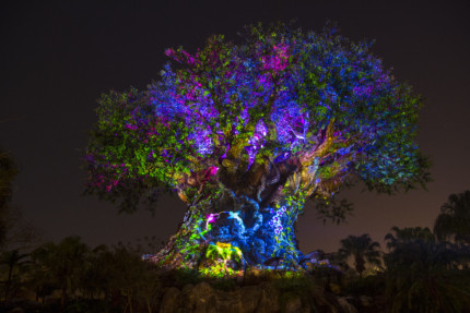 Celebrate New Year's Eve 2019 at Disney's Animal Kingdom Theme Park 3