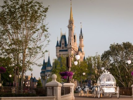 Disney announces weddings inside the Magic Kingdom! 20