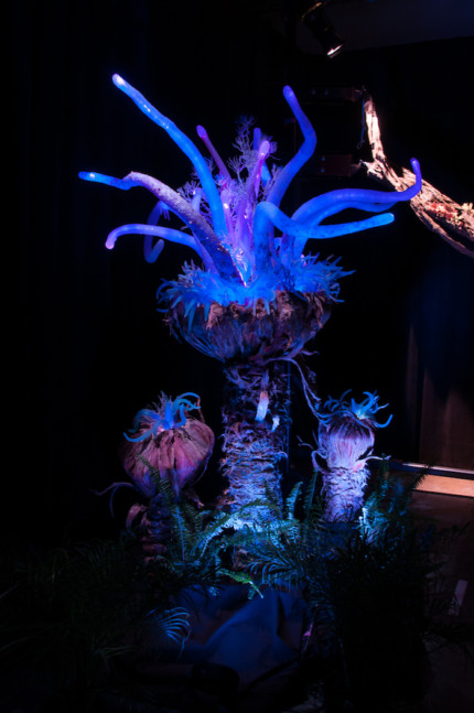 Authentic Details Bring to Life Pandora — The World of AVATAR at Disney's Animal Kingdom 23