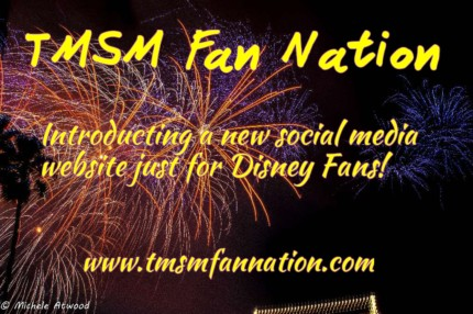 A New Social Media Community Exclusively for Disney Fans! 21