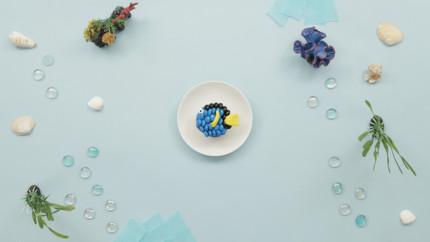 Finding Dory Cupcakes 7
