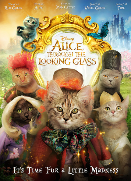 From Disney! Adorable Kitties Dress Up as Alice Characters.... And are up for adoption! 1
