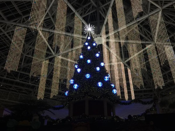 A Christmas Wish Light Show from the Gaylord Palms #CAGP16 18