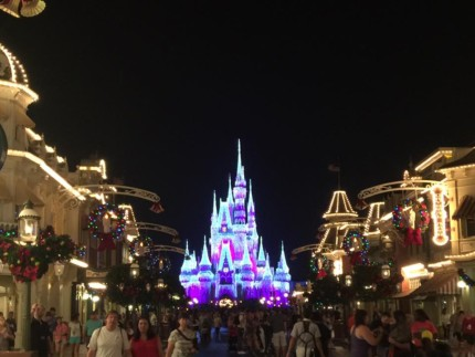 Disney World Holiday Cheer (videos) 11