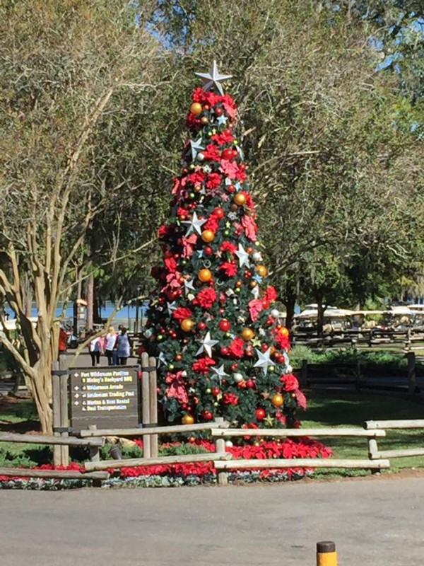 there are lovely trees at both the wilderness lodge and the ft wilderness campgrounds - Disney Christmas Trees