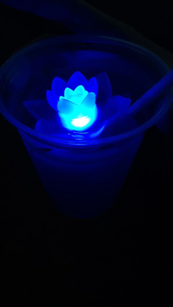 Get A Light Up Lotus Flower, by Rivers of Light! 2