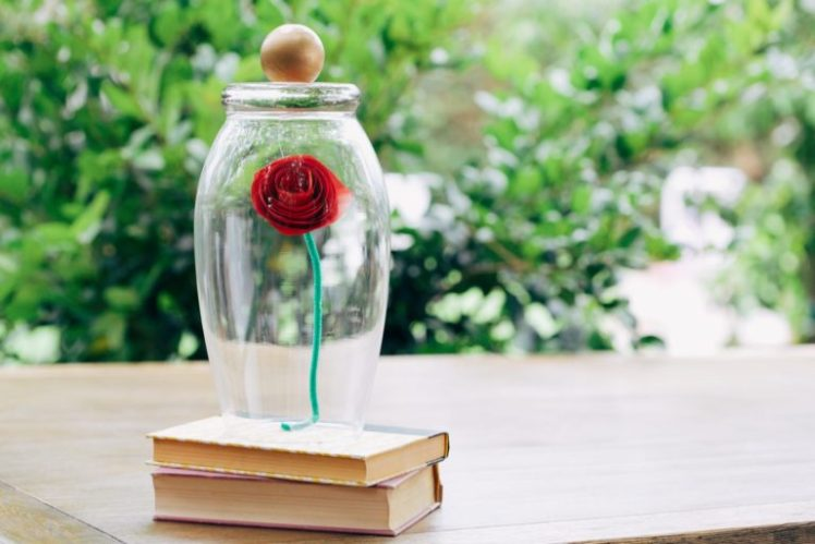 A Cute Idea For Beauty And The Beast Fans Make Your Own Rose Jar Here S How