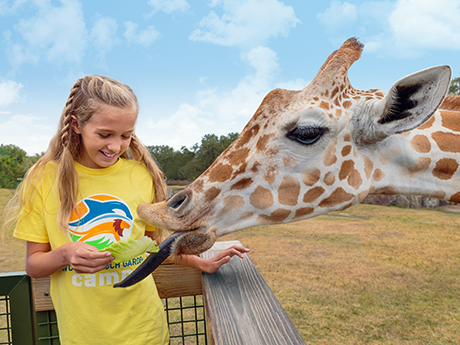 Busch Gardens Tampa Educational Day Camps Return This Summer