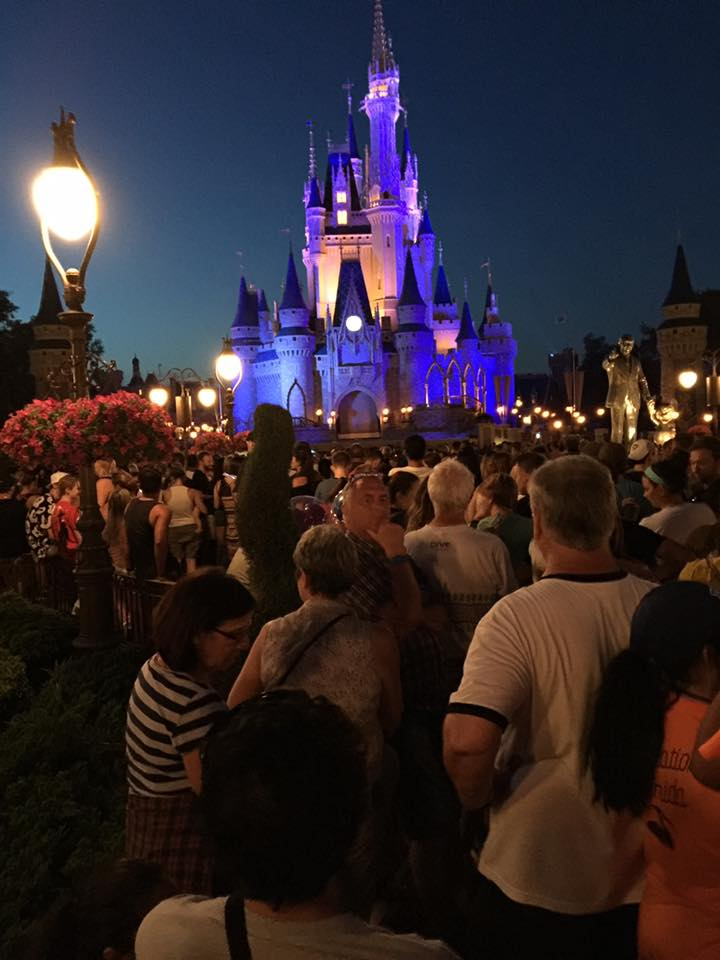 Happily Ever After Crowds ~ Get there Early! 2