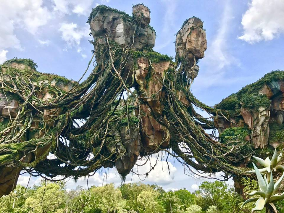 Stunning Photo Opportunities in Pandora – The World of Avatar 20