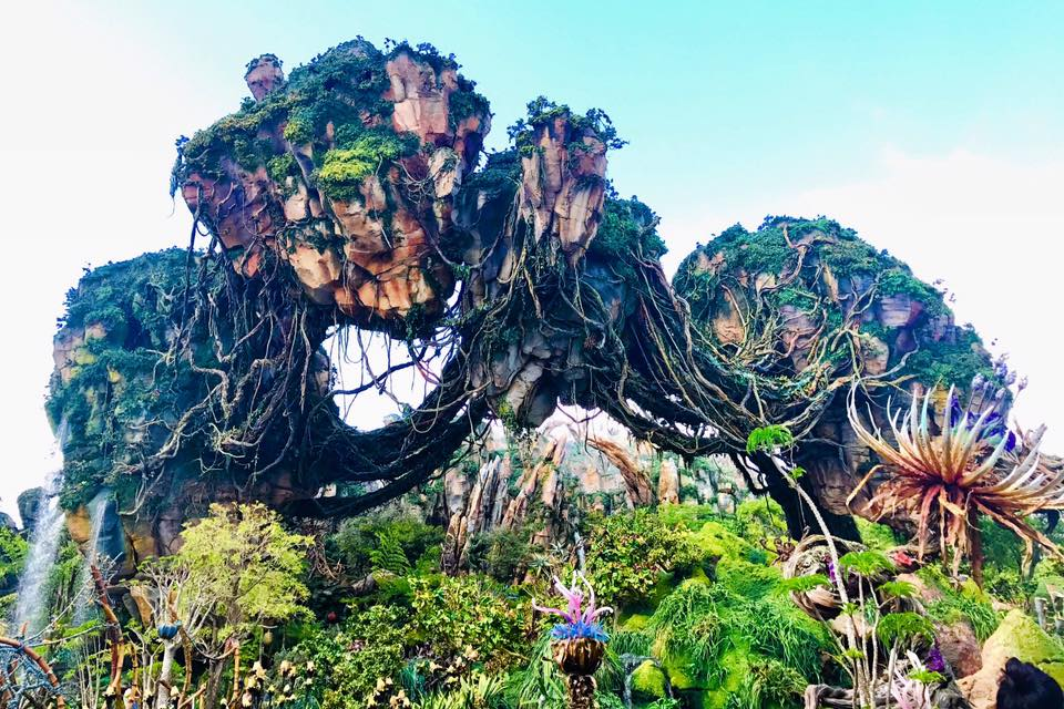 Our First Look at Pandora, World of Avatar, Animal Kingdom #VisitPandora 14