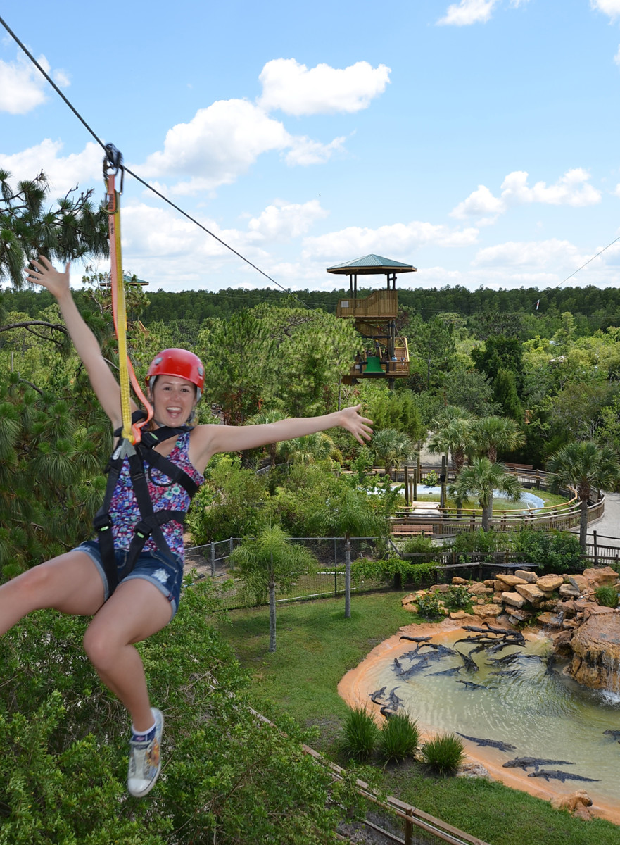 Gatorland Offers $20 Off Screamin Gator Zip Line #OffTMSM 1