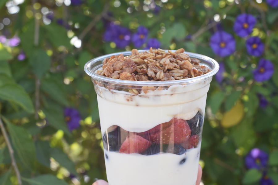 Fruit and Yogurt Parfait from Plaza Ice Cream Parlor at Magic Kingdom Park