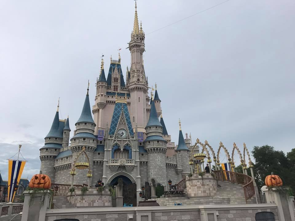 Disney World Set to Reopen Tuesday After Direct Hit From #HurricaneIrma See list of Damages 14