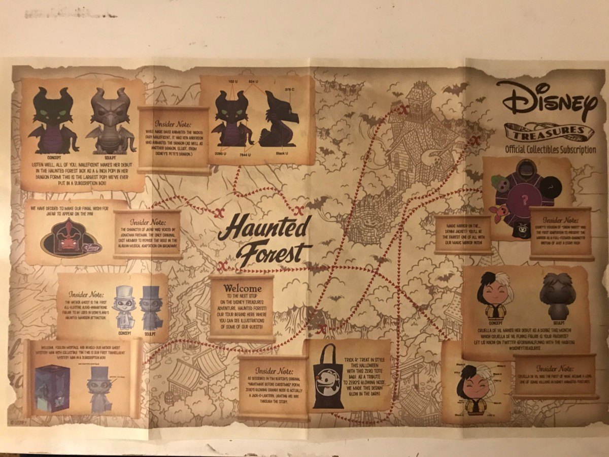 Disney Treasures October Box - Haunted Forest Review 12