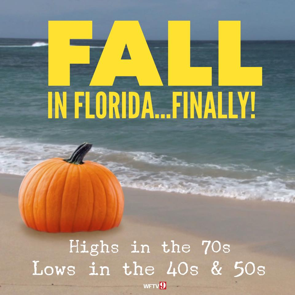 TMSM's Adventures in Florida Living ~ Fall is in the Air! 2